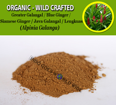 POWDER Greater Galangal Blue Ginger Siamese Ginger Java Galangal Alpinia... - $7.85+