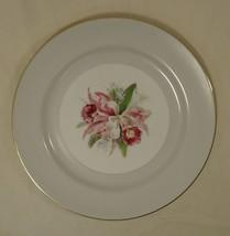 Noritake Margarita 5049 Vintage Dinner Plate 10in China Gold Rim - $25.48