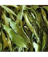 100% Pure Organic Dried Mango Leaves  Boost Fertility, Anti-Diabetics - $1.97+