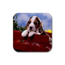 Cute Sweet Basset Hound Puppy Puppies Dogs Pet ... - $1.99