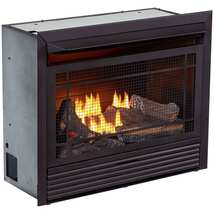 Duluth Forge Dual Fuel Ventless  Gas Fireplace Insert - 26,000 BTU, Remo... - €617,55 EUR