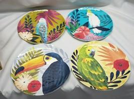 PIER 1 Tropical Jungle Birds Parrot Toucan Cockatoo Budgie Melamine Salad Plates - $48.49