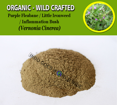 POWDER Purple Fleabane Little Ironweed Inflammation Bush Vernonia Cinerea - $7.85+