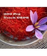 200 Pcs/bag Saffron Seeds (not crocus bulbs) Edible Iran Herb Plants - $4.85
