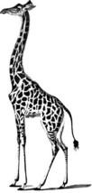 giraffe animal clipart png clipart Digital grap... - $1.00
