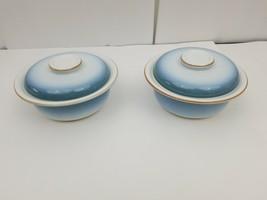 Nikko Gradiance Cereal Soup Bowl Lid Set of 2 Azure Leafette Dish Microw... - $20.79