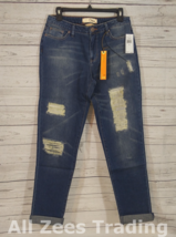 Dittos Asher Relaxed Straight Vintage Destructed Denim Women's Jeans 28 ... - $18.49