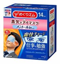 Kao Megrhythm Steam Eye Mask Mint for Men 14 Pieces