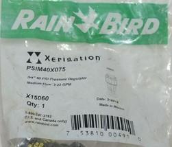 Rain Bird Xerigation 3/4 Inch 40 PSI Pressure Regulator X15060 image 2