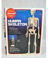 SCILCRAFT HUMAN LAB ANATOMICALLY ACCURATE PLASTIC MODEL KIT NEW! - $24.74