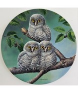 Knowles Out on a Limb Great Gray Owls Plate Joe Thornbrugh Baby Owls #5 USA - $29.70