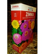 "Zinnia Semi-Dwarf 18""-24"" SEEDS BIG BOX  Mix COLORS 100+ COVER 25 SQ FT+ - $5.93"