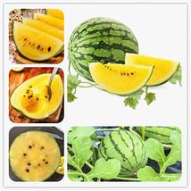 Rare Yellow Flesh Watermelon Seeds Watermelon Seeds Fruit Vegetable Seed... - $4.76