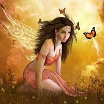 Butterfly Fairy  – Direct Bind Only - $39.00+