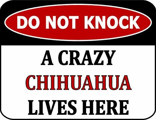 Primary image for Top Shelf Novelties Do Not Knock A Crazy Chihuahua Lives Here (v2) Laminated Dog