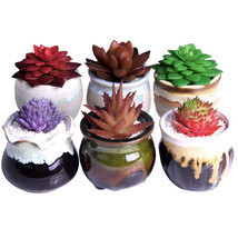 6Pcs Mini Succulent Plants Planters Bonsaipot Ceramic Flower Potted Home... - $43.53
