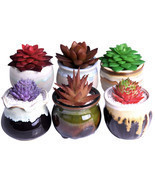 6Pcs Mini Succulent Plants Planters Bonsaipot Ceramic Flower Potted Home... - $55.66 CAD
