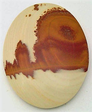 Primary image for Owyhee Jasper Cabochon 121