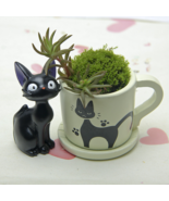 Black Cat Figurines Resin Cacti Micro Landscape Flowers Succulent Plants... - £10.58 GBP