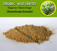 POWDER Fingeroot Chinese Ginger Boesenbergia Pandurata Organic Wild Crafted - $7.85+