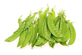 Pea Snow Oregon Giant Non GMO Heirloom Garden Vegetable Seeds Sow No GMO... - $4.64+