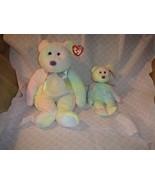 Ty Beanie Baby & Beanie Buddy Groovy - $20.99