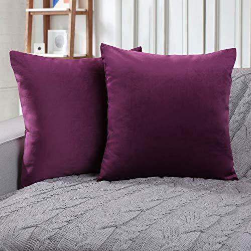 Phantoscope Set of 2 Soft Cozy Velvet Throw Pillow Solid Square Cushion Cover Eg
