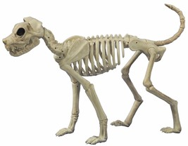 Scary Zombie SKELETON DOG BUSTER BONEZ Halloween Haunted Pet Cemetery Pr... - $59.37