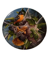 Knowles China Baltimore Orioles Collector Plate, Birds of Your Garden Se... - $19.99