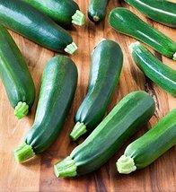 25 Seeds of Black Zucchini - $7.91