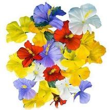 Hawaii Set Kunstseide Hibiskus Blumen Hawaii Luau Tropische Dekorationen - $6.62+