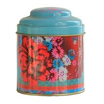 Kylin Express Unique Style Double-Deck Lids Tin Tea Canister Tea Storage Contain - $14.80