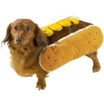 Dog Halloween Costume Hot Diggity Dog Pet costumes XS-XXL image 3