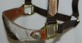 Pioneer Horse Tack Horse Show Halter Leather Hair Nylon Combnation image 4