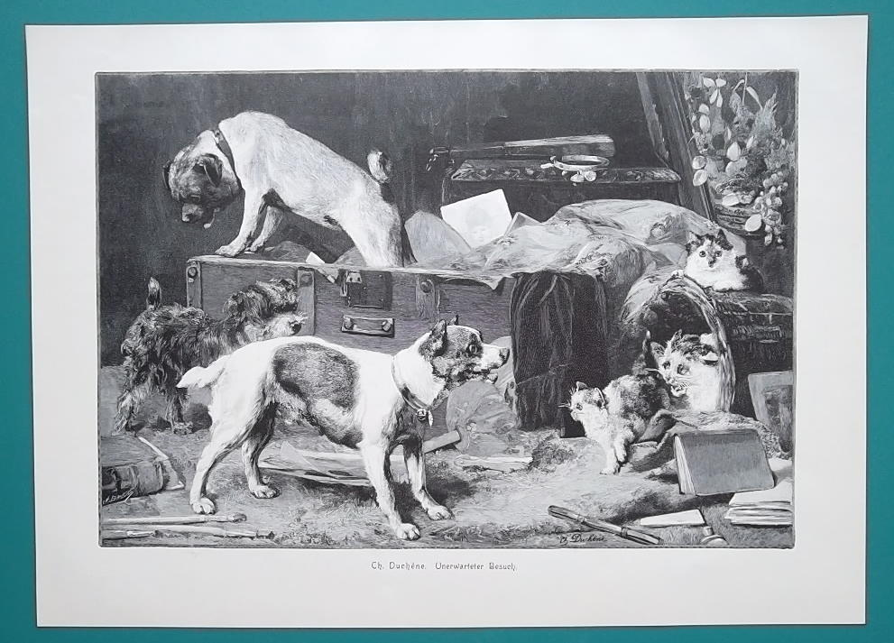 Primary image for DOG Visit Cats Kittens - VICTORIAN Era Print