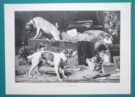 DOG Visit Cats Kittens - VICTORIAN Era Print - $19.80