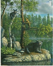 Kim Norlien The Guardian Bear & Cubs 100 pc Bagged Boxless Jigsaw Puzzle... - $9.16