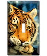 new bengal wild tiger Siberian cat single light switch cover plate children play - $10.99
