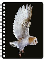 Barn Owl Flying Notebook with an amazing 3D image on the cover - $5.18