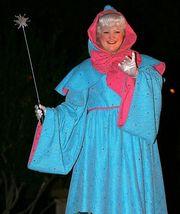 Cinderella Fairy Godmother Costume Fairy Godmother Cosplay Costume - $148.00