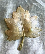 """Sarah Coventry Elegant Faux Pearl Gold-tone Maple Leaf Brooch 2 1/2"""" - $14.20"""