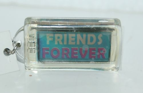 Ganz Solar Powered Flashing Friends Forever Key Chain Baby Blue White Pink