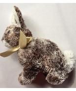 Rabbit Bunny Plush Cocoa Princess Soft Toys 2008 Borders Exclusive Plush... - $15.83