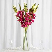 6 pcs Gladiolus Single Stems for Wedding Flowers Bouqouet Arrangement Tk... - $66.33