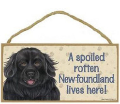 "Spoiled Rotten Newfoundland Lives Here Sign Plaque Dog 10"" x 5"" pet gift - $9.95"