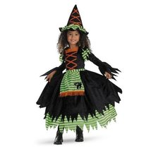Story Book Witch Costume - Small or Medium (2T or 3T-4T) - $465,88 MXN
