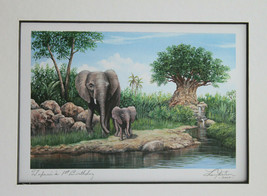 Disney Animal Kingdom Tufani's 1st Birthday Larry Dotson Signed Print 20... - $53.92