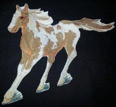 BeyondVision Custom and Unique Spirit of Stallions [Painted Horse ] [Cus... - $14.84