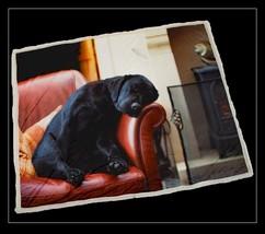 Lusso Addormentato Labrador Cucciolo di Cane Pile Sherpa Lenzuolo Copriletto - $52.32
