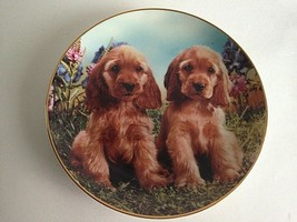 """DANBURY MINT PERFECT PUPPIES PLATE 8""""  Limited Edition A256 1994 - $17.23"""